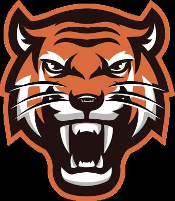 Принт Кепка Tiger, Фото № 1 - FatLine