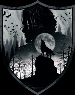 Принт Жіноча футболка Game of Thrones Silhouettes, Фото № 1 - FatLine