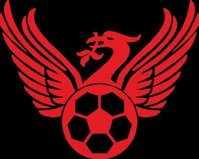 Принт Жіноча футболка Liverpool and soccer ball, Фото № 1 - FatLine