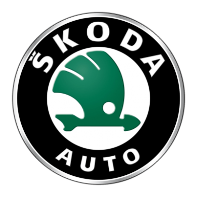 Принт Мужская толстовка на молнии Skoda Auto - FatLine