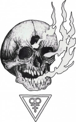 Принт Жіноча футболка Smoke from the skull, Фото № 1 - FatLine
