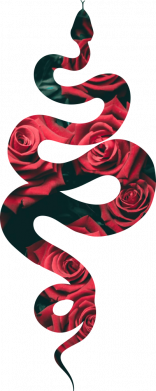 Принт Кепка Snake and roses, Фото № 1 - FatLine