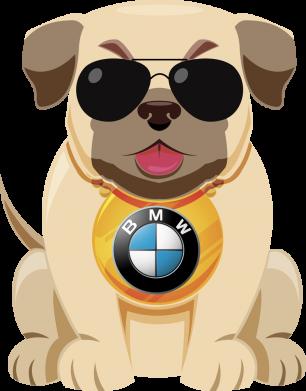 Принт Кепка Dog with a collar BMW, Фото № 1 - FatLine