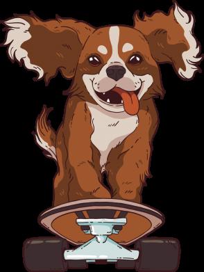 Принт Женская футболка Собака Кавалер на Скейте, Фото № 1 - FatLine