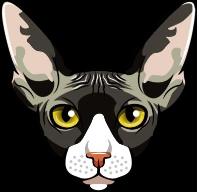 Принт Жіноча футболка Котя сфінкс жовті очі, Фото № 1 - FatLine