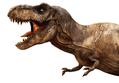 Принт Жіноча футболка T-rex in profile, Фото № 1 - FatLine