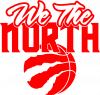 We the north and the ball