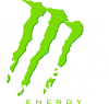 Kawasaki Monster Energy