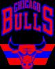 Большой логотип Chicago Bulls