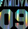 Ваша фамилия и номер голограмма