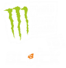 Ken Block Monster Energy