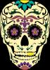 Sugar Skull Vector