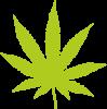 Листочок марихуани