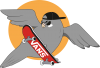 Pigeon with skateboard
