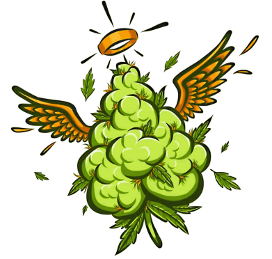Принт Жіноча футболка Cannabis, Фото № 1 - FatLine