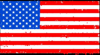 Принт Женская футболка с V-образным вырезом США - FatLine