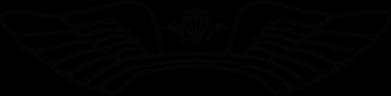 Принт Женская футболка Крылья десанта - FatLine