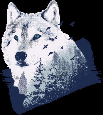 Принт Женская футболка Wolf and forest, Фото № 1 - FatLine