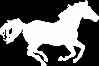 Принт Мужская толстовка Лошадка, Фото № 1 - FatLine