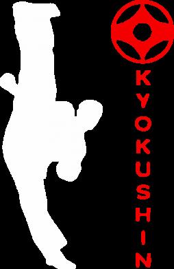 Принт Мужская толстовка Kyokushin Kick, Фото № 1 - FatLine