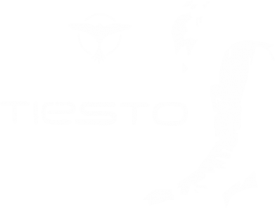 Принт Футболка Tiesto - FatLine