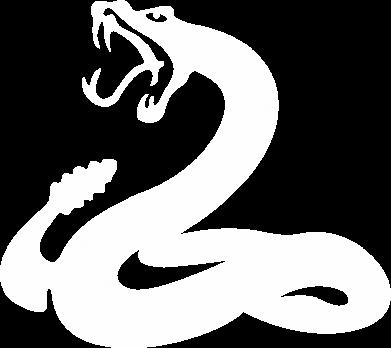 Принт Змея - FatLine