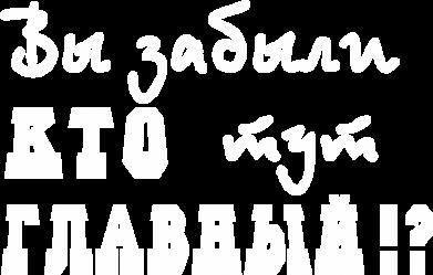 Принт Камуфляжная футболка Забыли кто тут главный? - FatLine