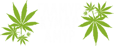 Принт Камуфляжная футболка Гламур кумар амур - FatLine
