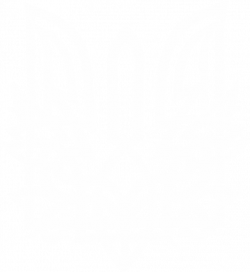 Принт Жіноча футболка Emblem 9, Фото № 1 - FatLine