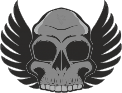 Принт Шапка Winged Skull - FatLine