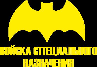 Принт Детская футболка логотип Спецназ - FatLine