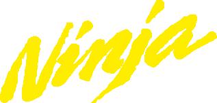 Принт Реглан (світшот) Ninja - FatLine