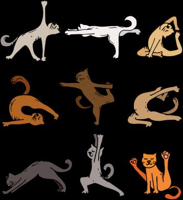 Принт Чохол для Meizu E3 Yoga cats - FatLine