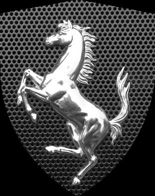 Принт Жіноча футболка Stallion metal, Фото № 1 - FatLine