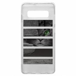 Чехол для Samsung S10+ All seeing cat