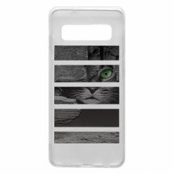 Чехол для Samsung S10 All seeing cat