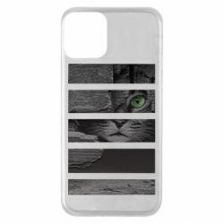 Чехол для iPhone 11 All seeing cat