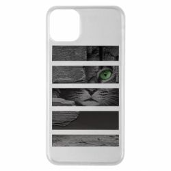 Чехол для iPhone 11 Pro Max All seeing cat