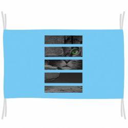 Флаг All seeing cat