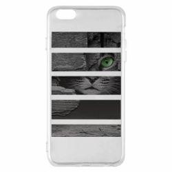 Чехол для iPhone 6 Plus/6S Plus All seeing cat