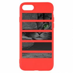 Чехол для iPhone 7 All seeing cat