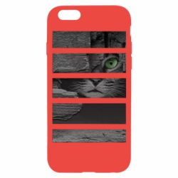Чехол для iPhone 6/6S All seeing cat