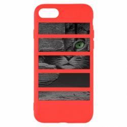 Чехол для iPhone 8 All seeing cat