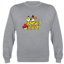 Реглан Angry birds Team - FatLine