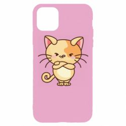 Чехол для iPhone 11 Pro Angry red cat