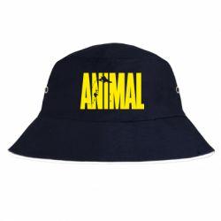 Панама Animal Gym
