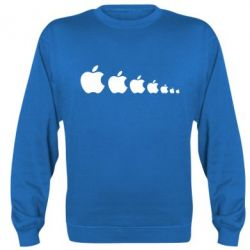Реглан Apple Evolution