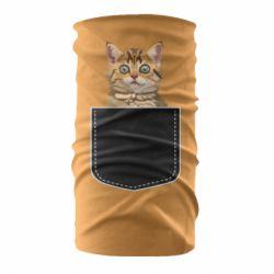 Бандана-труба Cat in your pocket