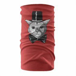 Бандана-труба Black and white cat intellectual