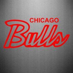 Наклейка Bulls from Chicago - FatLine